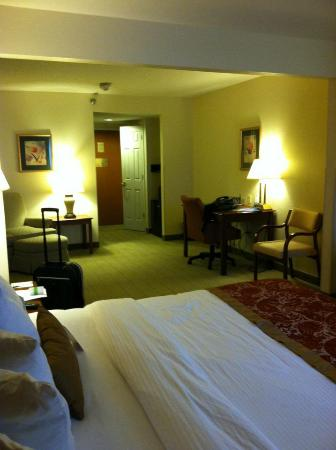 Wingate by Wyndham Schaumburg / Convention Center: King suite. Very clean and inviting!