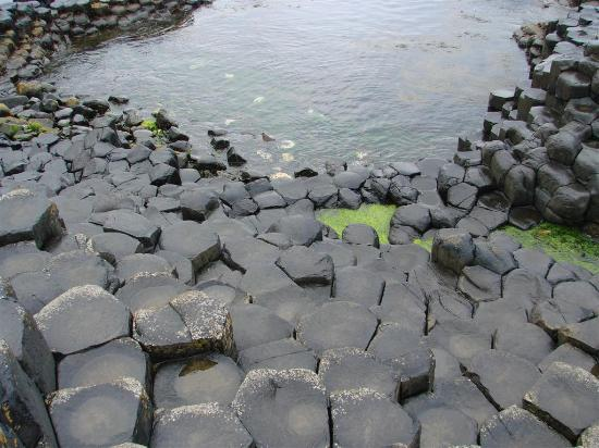 Giant's Causeway : Slippery when wet