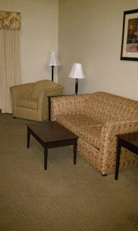 Holiday Inn Express South: Fold-Out couch