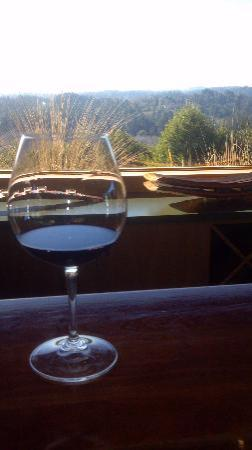 Gary Farrell Winery: From inside tasting room, gorgeous view of Russian River Valley