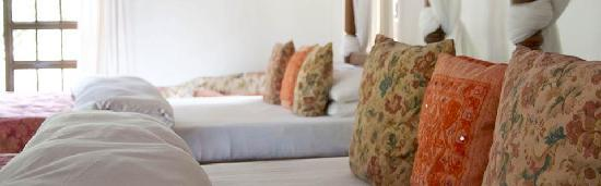 Rivertrees Country Inn: An inviting place to sleep after your safari or Kili climb