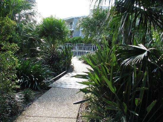 Coolum at the Beach: Gardens