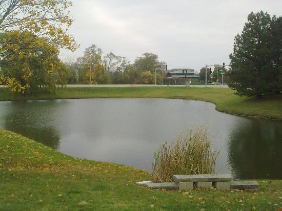 Staybridge Suites Lincolnshire: Small water body behind the hotel