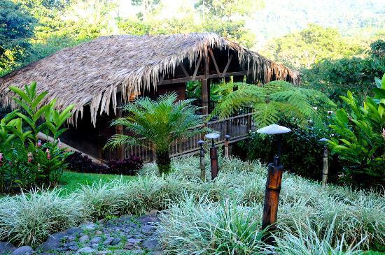Argovia Finca Resort, Ruta del cafe: My amazing bungalow #2