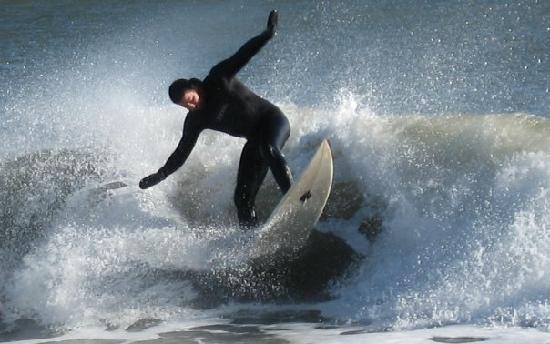 The Tourist Trap Shoppe Cafe Guest House: Surfer