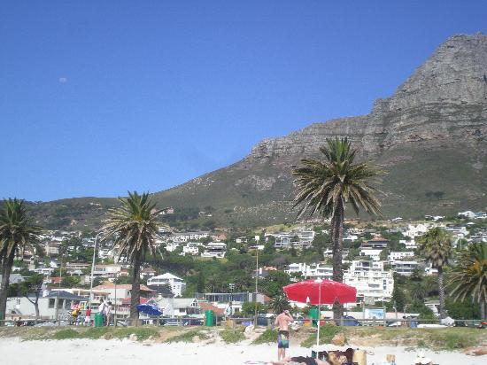 Camp's Bay Beach: Gotta love those palm trees