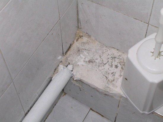جورجيو بولس بيتش هوتل: badets innbyggere