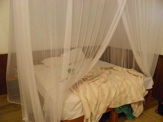 Rimba Orangutan Eco Lodge: Room