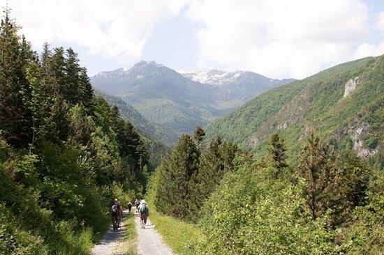 Pyrenees National Park (Parc National des Pyrénées)
