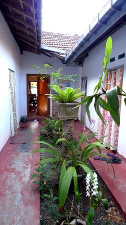 Ayu Bowan House: patio