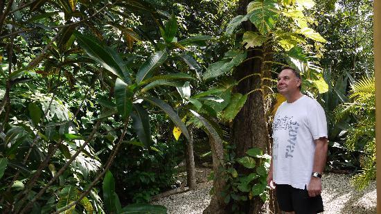 Casa Valentina: Dschungel-Feeling