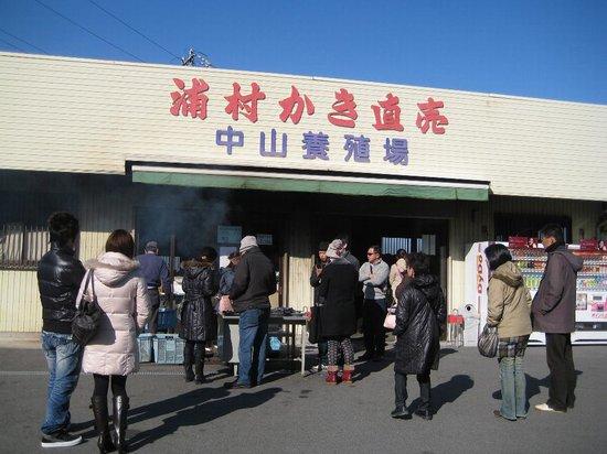 Toba, Japan: 浦村牡蠣直売場