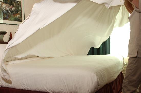 GrandStay Hotel & Suites Appleton-Fox River Mall: Luxury Bedding