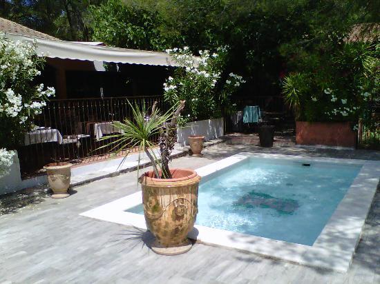 le coin jardin proximit de la terrasse photo de tarascon bouches du rhone tripadvisor. Black Bedroom Furniture Sets. Home Design Ideas