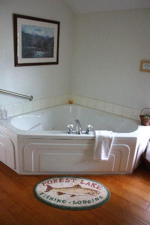 Miller Tree Inn Bed & Breakfast: Elk-View Room - jetted tub (for 2)