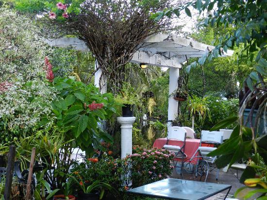 D'Nest Inn: Beautiful Garden