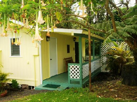 Coconut Cottage Bed & Breakfast: Garden Bungalow