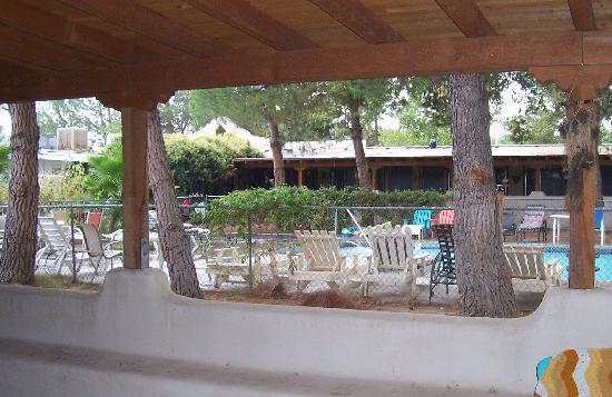 Jacumba Hot Springs Hotel: Pool is dismal, chairs mismatched and grounds not kept up