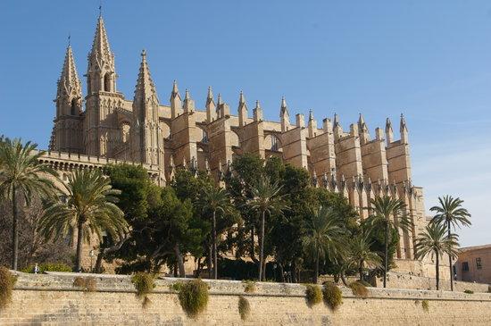 City Sightseeing Palma de Mallorca Photo