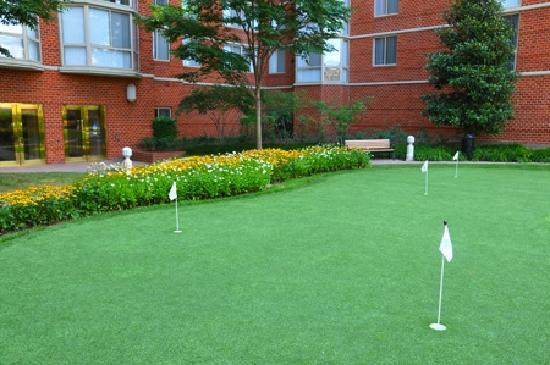 Bridgestreet Meridian Carlyle: Putting green
