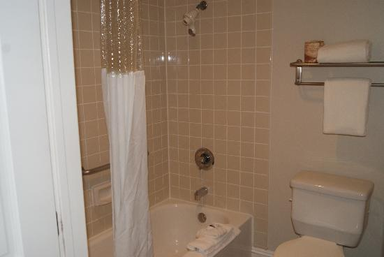 Ramada Oceanside : bathroom