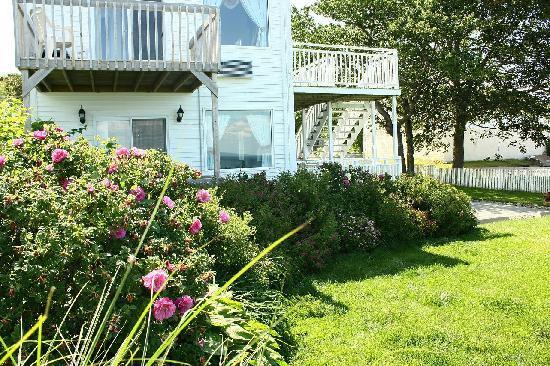 Come From Away B&B Inn: Spring garden