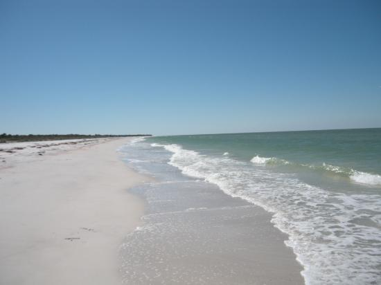 Caladesi Island State Park: Beautiful Beaches