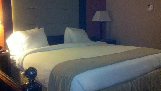 Holiday Inn Express Hotel & Suites Columbia-Fort Jackson : King size bed