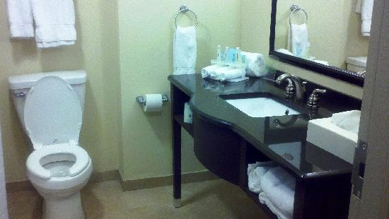 Holiday Inn Express Hotel & Suites Columbia-Fort Jackson: Bathroom