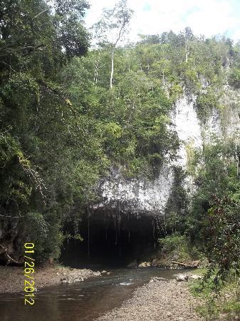 Jaguar Paw: Cave enterance