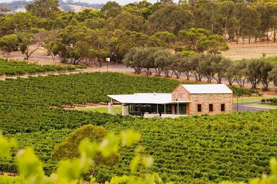 Angove Mclaren Vale Cellar Door 2018 All You Need To Know
