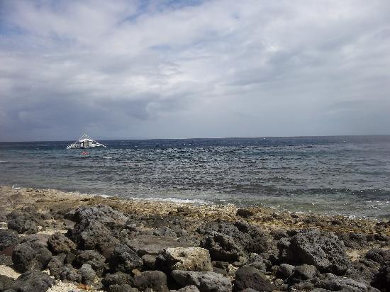 Apo Island Marine Reserve : marine sanctuary