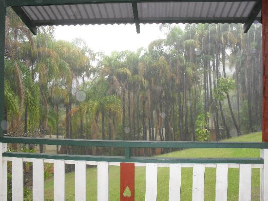Paradise Palms: View from balcony during the rain