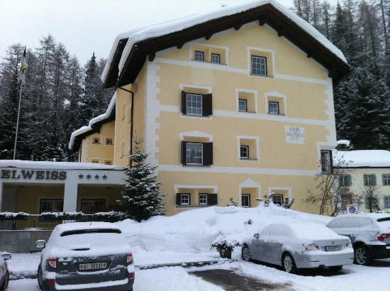 Hotel Edelweiss: next door to the Friedrich Nietzsche museum!