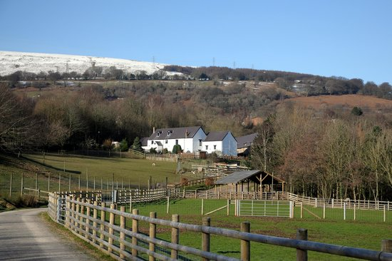Cwmbran, UK: A view of the farm