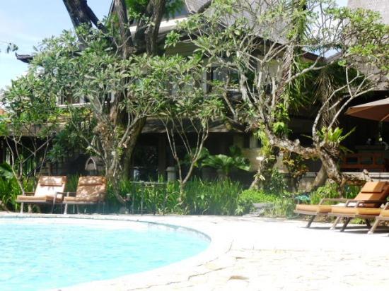 Hotel Vila Lumbung: pool