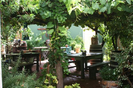 Tradouw Guesthouse: Courtyard