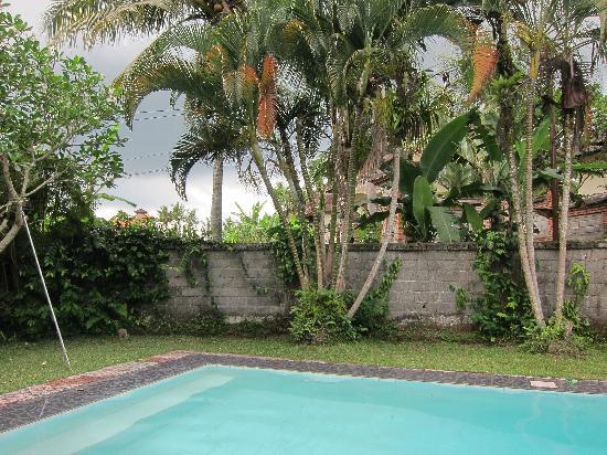 Abangan Bungalow : Swimming pool