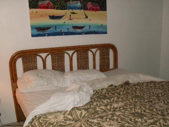 Sydans Apartments and Villas: King size bed