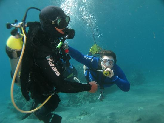 Snuba Dive Resort: The Amazing Barach