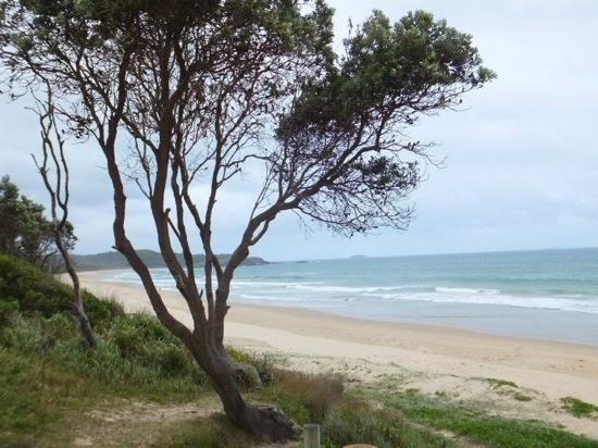 Aquajet Motel: local beach