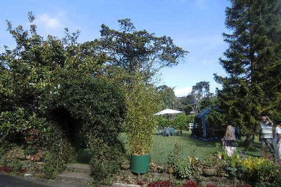 Glen Fall Resort: Garden