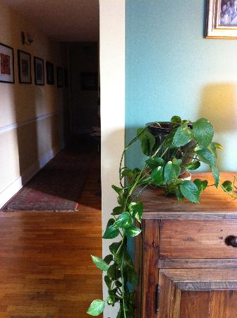 Briar Rose Bed and Breakfast: Hallway in Afternoon Light