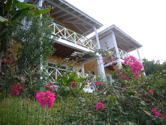 Mango Bay Cottages: the 4 apartments
