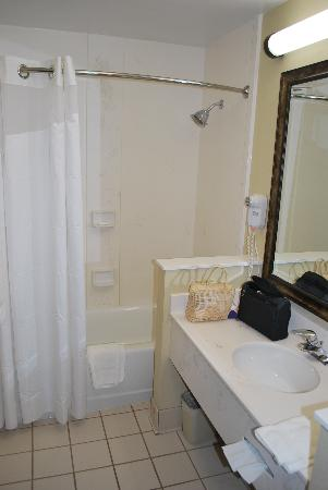 Holiday Inn Hotel & Suites Owatonna: Bathroom.