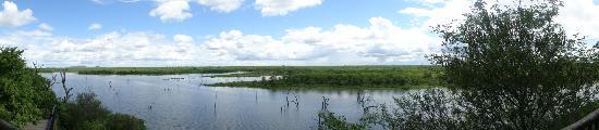 Mopani Rest Camp: Panoramica