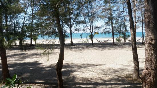 La Ensenada Beach Resort & Convention Center: plage de l'hôtel