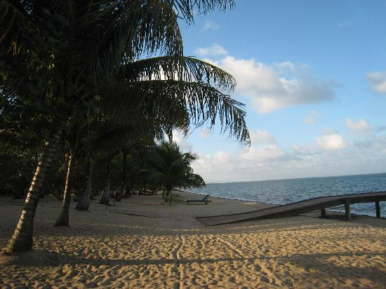 Hamanasi Adventure and Dive Resort: The Beach
