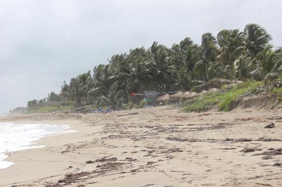 Hotel Monte Cristo: Beach near hotel Casa Roma