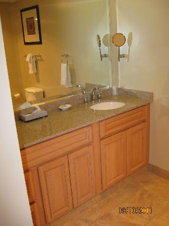 Riverside Hotel, an Ascend Hotel Collection Member: Bathroom